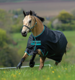 Amigo® Hero 900 Fleece Lined Turnout (50g Lite)