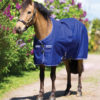 Amigo® Hero 900 Pony Turnout (200g Medium)