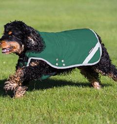 Rambo Duo Dog Blanket, Green