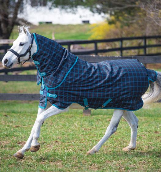 Amigo Pony Plus (50g Lite)