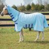 Rambo Pony Hoody Vamoose with No Fly Zone, baby blue with navy