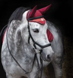 Horseware Fashion Airtech Earnet