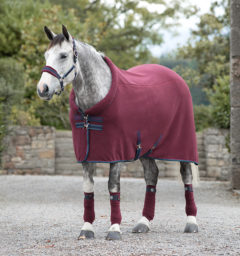 Rambo Cozy Fleece Burgundy Teal Navy