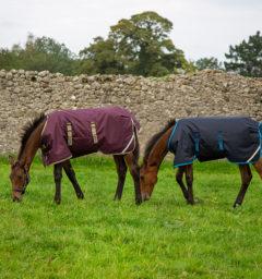 Amigo Ripstop Foal Blanket Navy & Fig