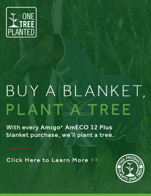 Amigo® AmECO 12 Plus Turnout (100g Lite)
