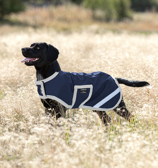 Amigo Ripstop Dog Rug Navy-Silver