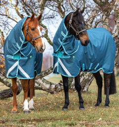 Ameco Turnout 250g two horses
