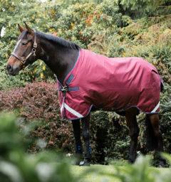 AAAA05-QQGB-Horse-Blanket-Rambo-Original-Turnout-V-Front-Closure-Burgu