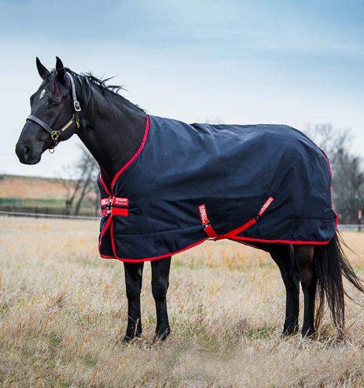 AAAAA2-BR00-Horse-Blanket-Rambo-Original-Turnout-Navy