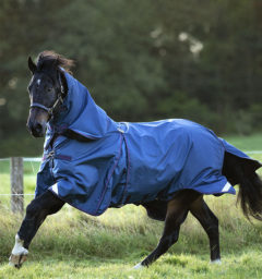 AAAF01-BQGB-Horse-Rambo-Optimo-Turnout-Navy