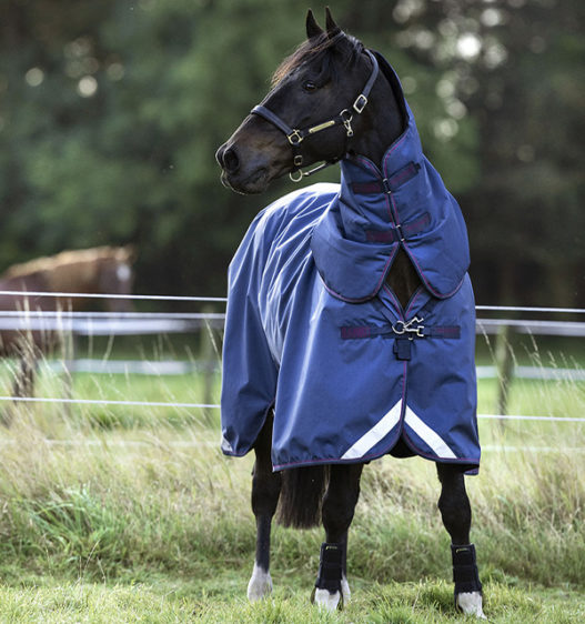 AAAF01-BQGB-horse-Rambo-Optimo-Turnout-with-hood