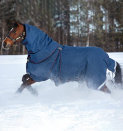 AAAF01-BQGB-horse-Rambo-Optimo-Turnout-with-hood-Navy