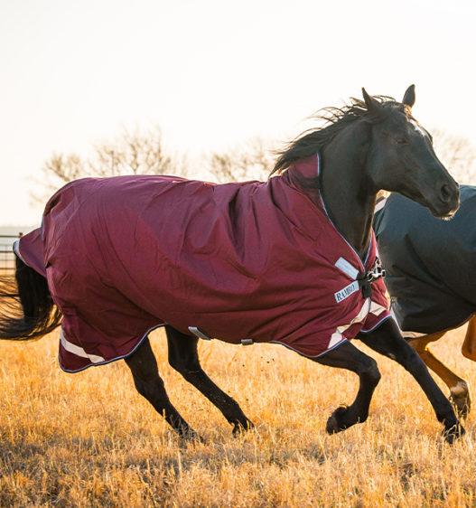 AAAW0E-QQDB-Rambo-Wug-Turnout-50g-Burgundy-running-horse